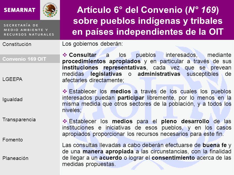 Planeación Igualdad Fomento LGEEPA Constitución Convenio 169 OIT Transparencia Artículo 6° del Convenio (N° 169) sobre pueblos indígenas y tribales en