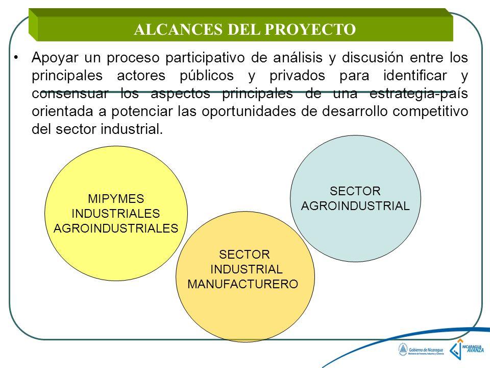 ALCANCES DEL PROYECTO Apoyar un proceso participativo de análisis y discusión entre los principales actores públicos y privados para identificar y consensuar los aspectos principales de una estrategia-país orientada a potenciar las oportunidades de desarrollo competitivo del sector industrial.