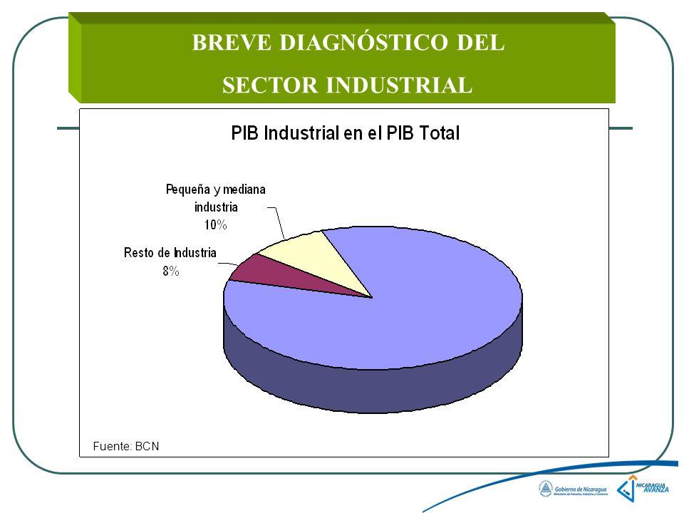 BREVE DIAGNÓSTICO DEL SECTOR INDUSTRIAL Fuente: BCN