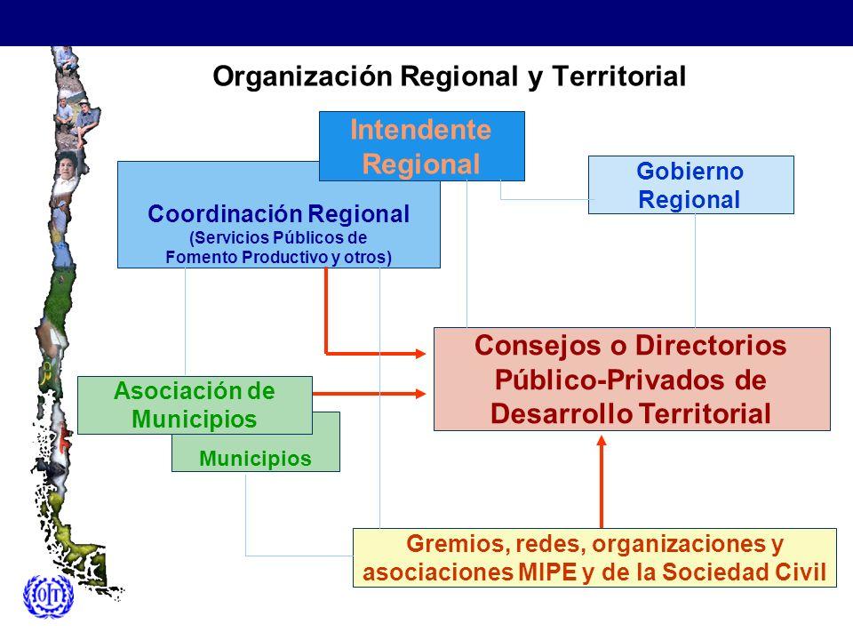 Organización Regional y Territorial Gremios, redes, organizaciones y asociaciones MIPE y de la Sociedad Civil Coordinación Regional (Servicios Público