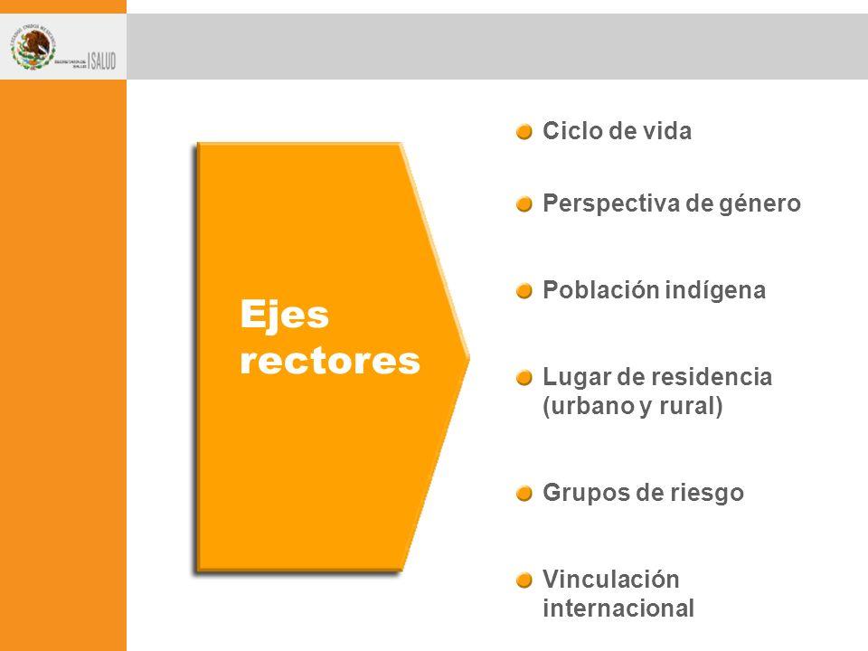 Ejes rectores Ciclo de vida Perspectiva de género Población indígena Lugar de residencia (urbano y rural) Grupos de riesgo Vinculación internacional