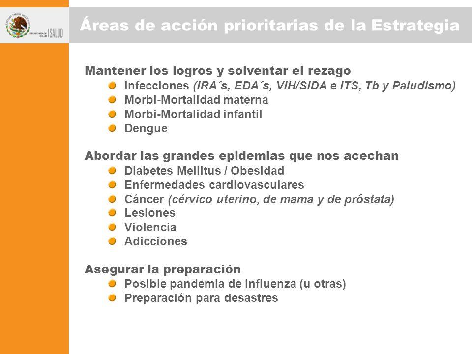 Áreas de acción prioritarias de la Estrategia Mantener los logros y solventar el rezago Infecciones (IRA´s, EDA´s, VIH/SIDA e ITS, Tb y Paludismo) Mor