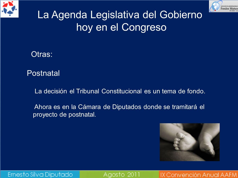 Otras: Postnatal La decisión el Tribunal Constitucional es un tema de fondo. Ahora es en la Cámara de Diputados donde se tramitará el proyecto de post