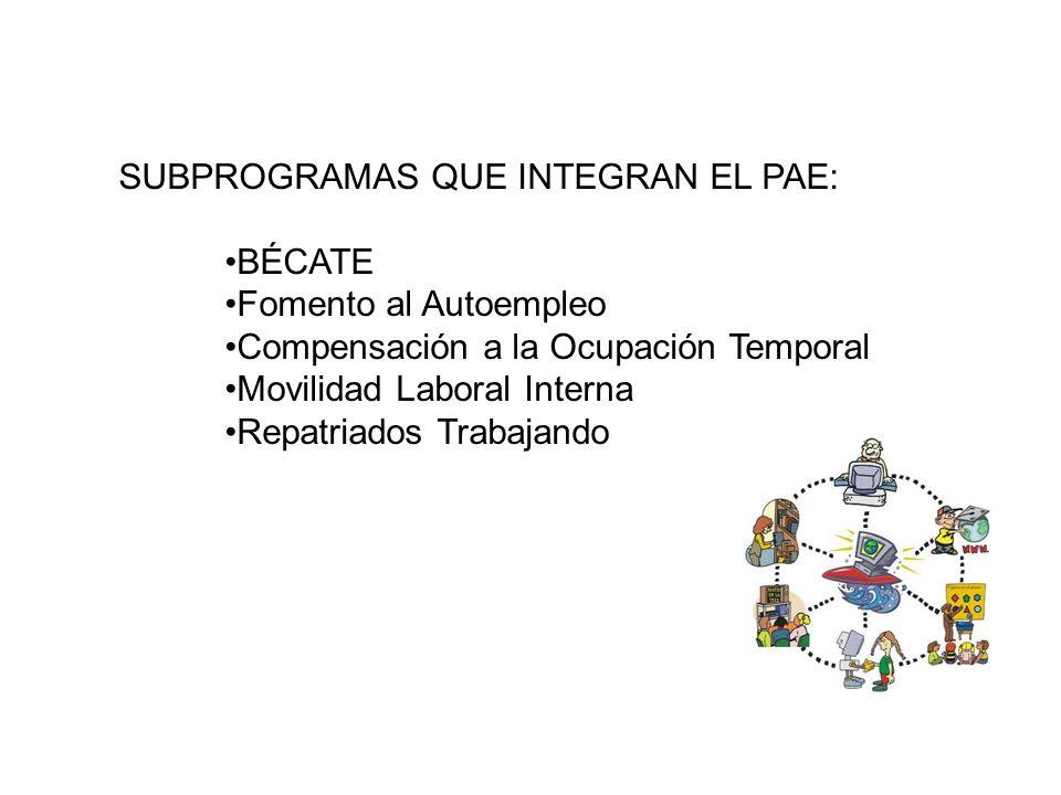 SUBPROGRAMAS QUE INTEGRAN EL PAE: BÉCATE Fomento al Autoempleo Compensación a la Ocupación Temporal Movilidad Laboral Interna Repatriados Trabajando