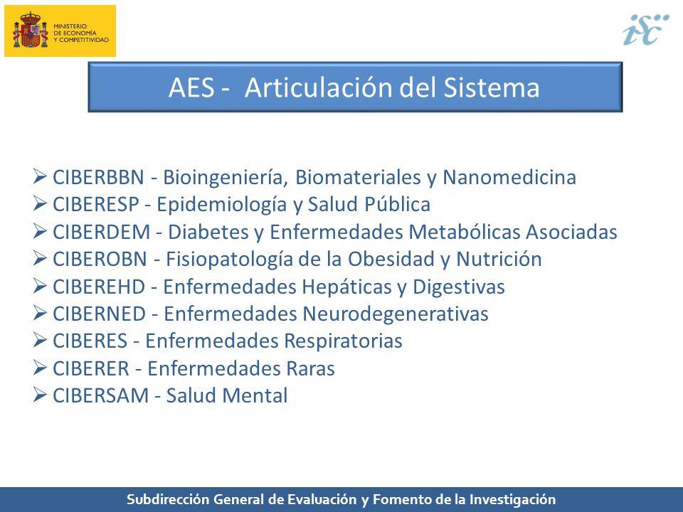 Subdirección General de Evaluación y Fomento de la Investigación AES - Articulación del Sistema CIBERBBN - Bioingeniería, Biomateriales y Nanomedicina