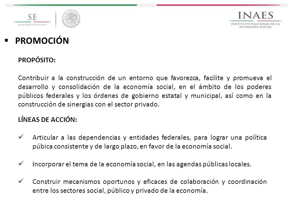 PROMOCIÓN PROPÓSITO: Contribuir a la construcción de un entorno que favorezca, facilite y promueva el desarrollo y consolidación de la economía social