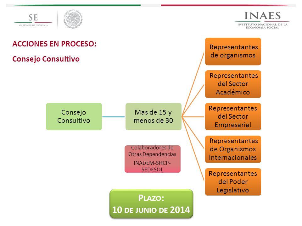 ACCIONES EN PROCESO: Consejo Consultivo Mas de 15 y menos de 30 Representantes de organismos Representantes del Sector Académico Representantes del Se