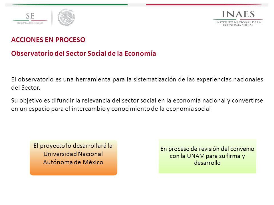 ACCIONES EN PROCESO Observatorio del Sector Social de la Economía El observatorio es una herramienta para la sistematización de las experiencias nacio