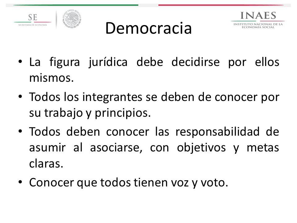 Democracia La figura jurídica debe decidirse por ellos mismos. Todos los integrantes se deben de conocer por su trabajo y principios. Todos deben cono