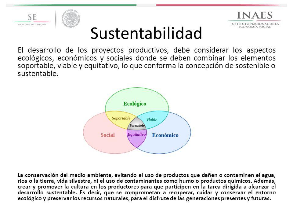 Sustentabilidad El desarrollo de los proyectos productivos, debe considerar los aspectos ecológicos, económicos y sociales donde se deben combinar los