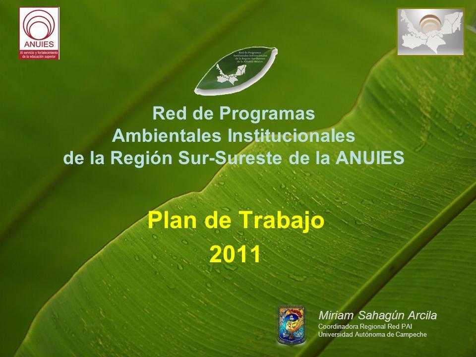 Red de Programas Ambientales InstitucionaIes de la Región Sur-Sureste de la ANUIES Plan de Trabajo 2011 Miriam Sahagún Arcila Coordinadora Regional Red PAI Universidad Autónoma de Campeche