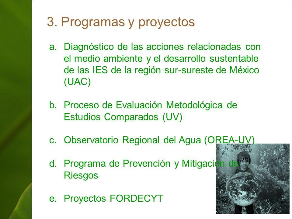 ThepowerpointTemplates.com 13 3. Programas y proyectos a.Diagnóstico de las acciones relacionadas con el medio ambiente y el desarrollo sustentable de