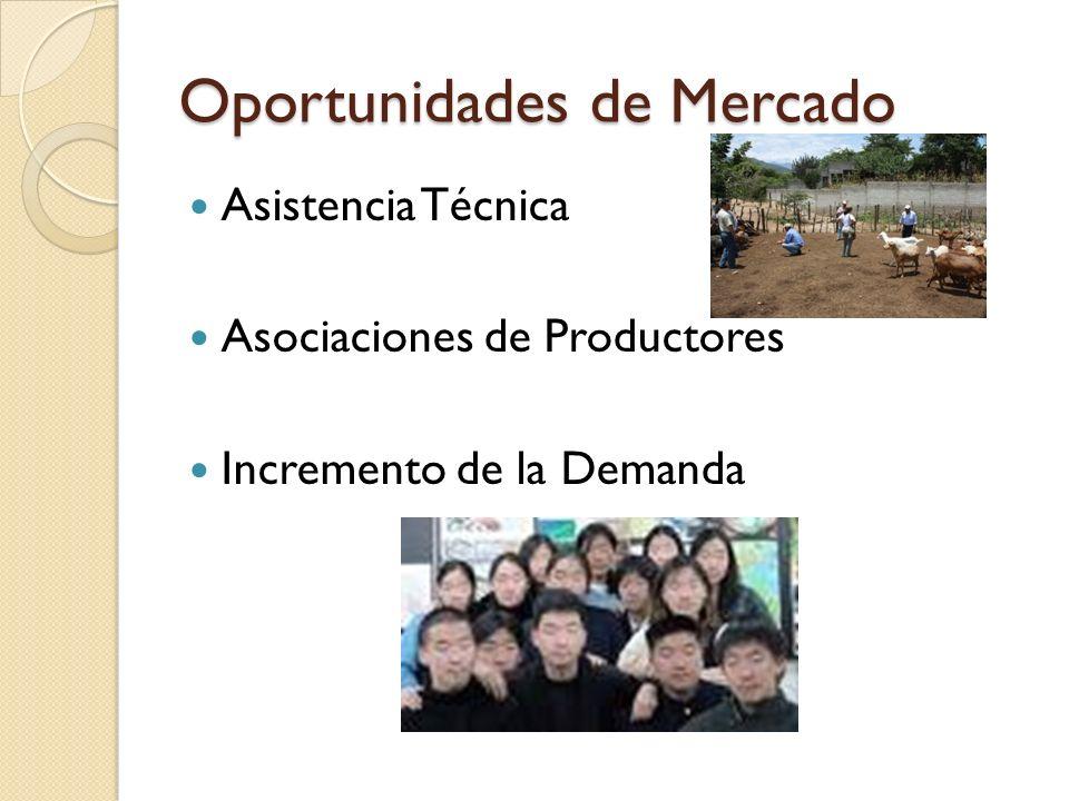 Oportunidades de Mercado Asistencia Técnica Asociaciones de Productores Incremento de la Demanda