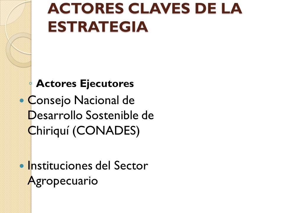 ACTORES CLAVES DE LA ESTRATEGIA Actores Ejecutores Consejo Nacional de Desarrollo Sostenible de Chiriquí (CONADES) Instituciones del Sector Agropecuar