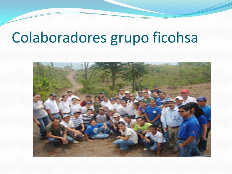 Colaboradores grupo ficohsa