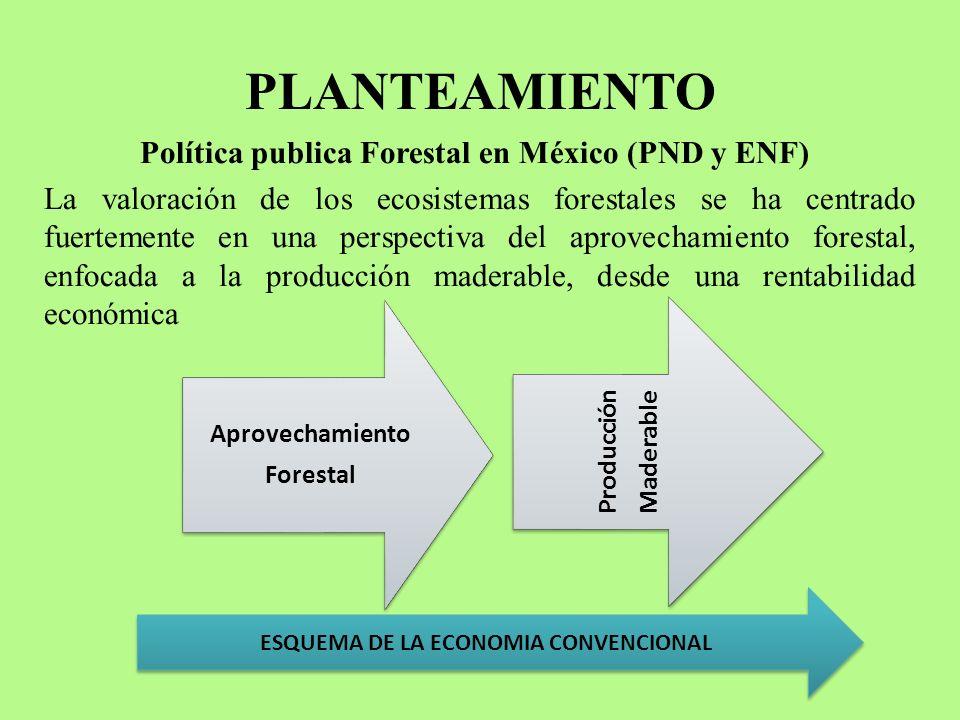 PLANTEAMIENTO Política publica Forestal en México (PND y ENF) La valoración de los ecosistemas forestales se ha centrado fuertemente en una perspectiv