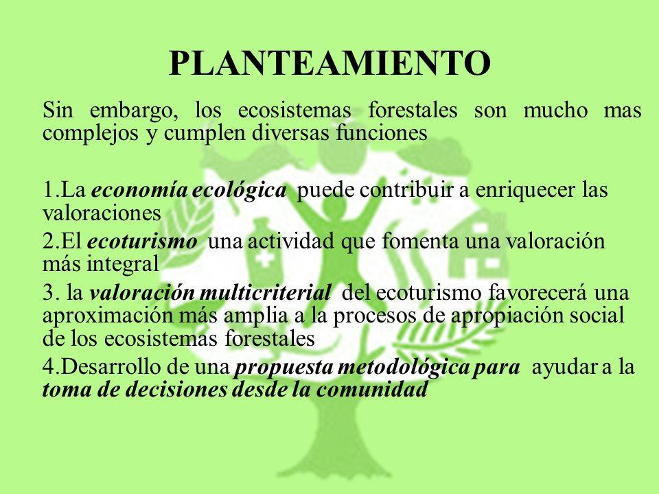 PLANTEAMIENTO Sin embargo, los ecosistemas forestales son mucho mas complejos y cumplen diversas funciones 1.La economía ecológica puede contribuir a