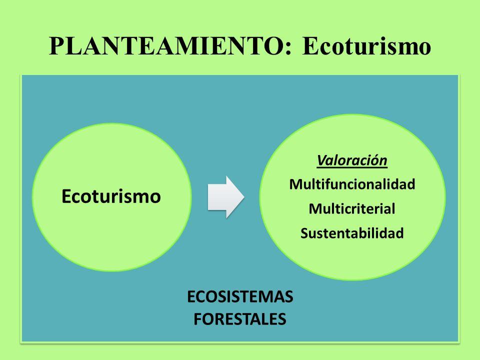 PLANTEAMIENTO: Ecoturismo Ecoturismo Valoración Multifuncionalidad Multicriterial Sustentabilidad ECOSISTEMAS FORESTALES