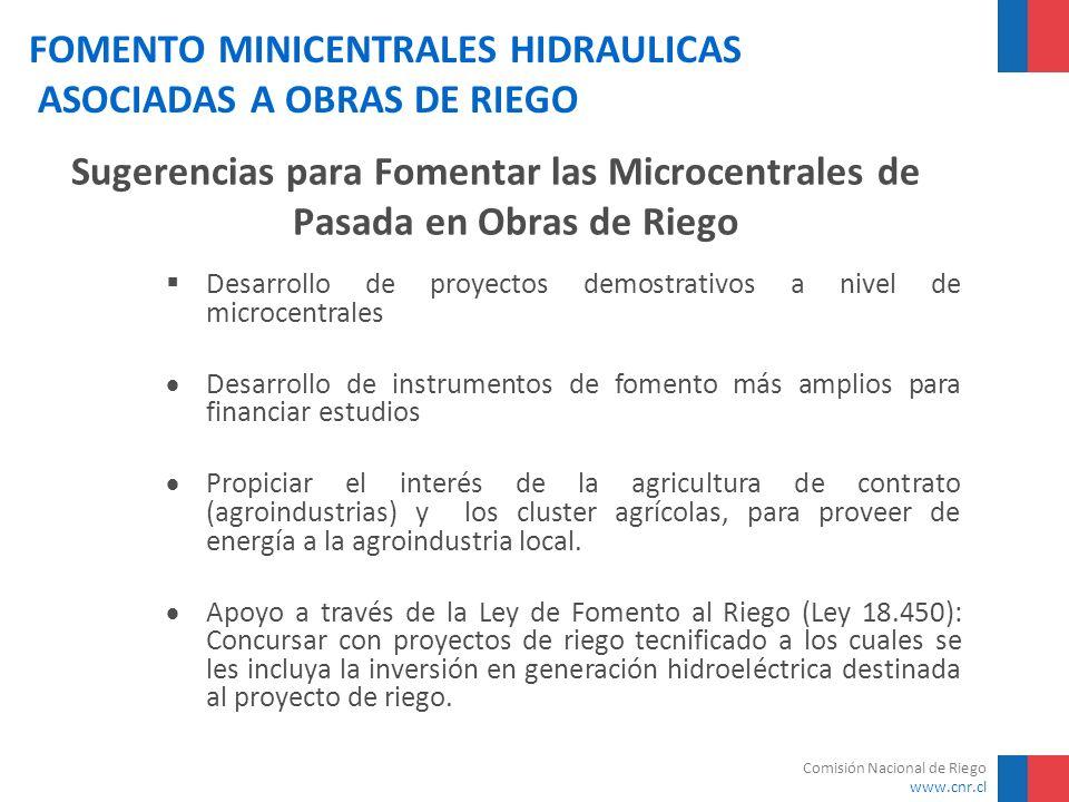 Comisión Nacional de Riego www.cnr.cl FOMENTO MINICENTRALES HIDRAULICAS ASOCIADAS A OBRAS DE RIEGO Sugerencias para Fomentar las Microcentrales de Pas