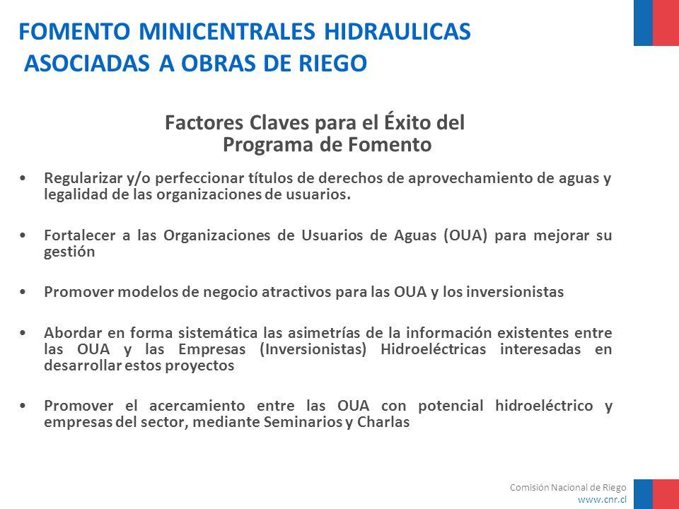 Comisión Nacional de Riego www.cnr.cl FOMENTO MINICENTRALES HIDRAULICAS ASOCIADAS A OBRAS DE RIEGO Factores Claves para el Éxito del Programa de Fomen