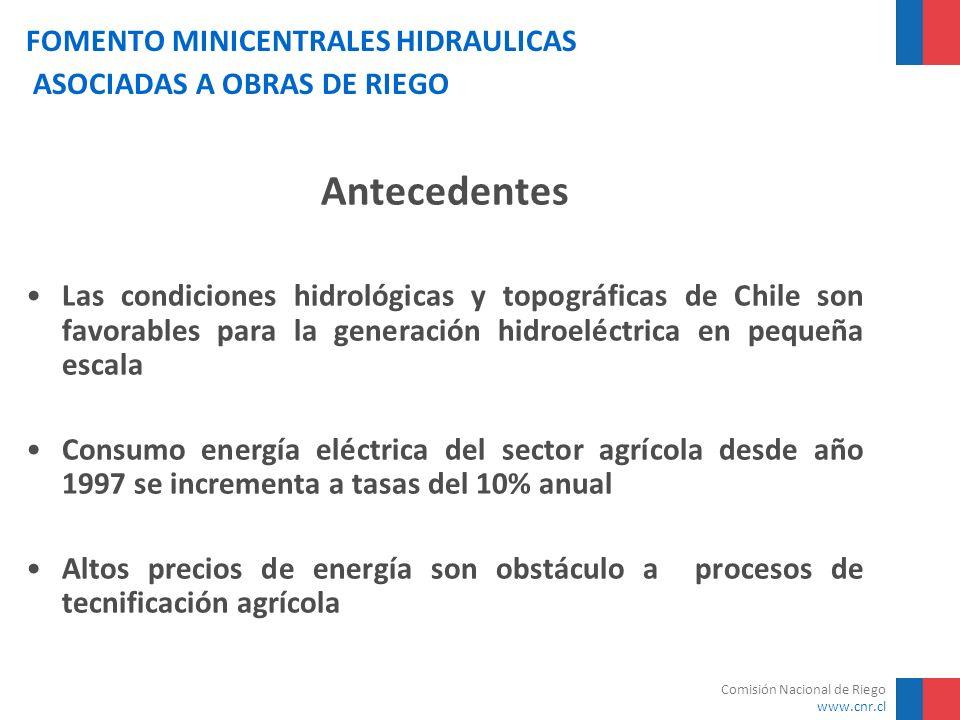 Comisión Nacional de Riego www.cnr.cl FOMENTO MINICENTRALES HIDRAULICAS ASOCIADAS A OBRAS DE RIEGO Costos Estimados de Inversión Una de las desventajas de la energía hidroeléctrica en pequeña escala (microcentrales) es el alto costo de la inversión inicial Potencia (KW)Monto Estimado de Inversiones (US$) 2590.000 50160.000 100300.000 200530.000 1.0001.500.000