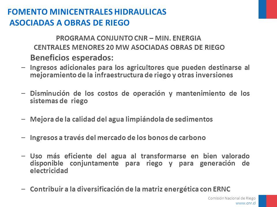 Comisión Nacional de Riego www.cnr.cl FOMENTO MINICENTRALES HIDRAULICAS ASOCIADAS A OBRAS DE RIEGO NºCentral Energía generada Factor de Planta Precio Energía Potencia Firme GWh % $/kWhMW 1C.