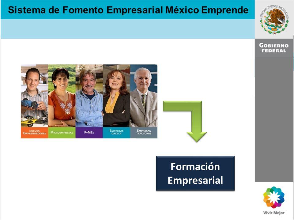 Sistema de Fomento Empresarial México Emprende Formación Empresarial Formación Empresarial