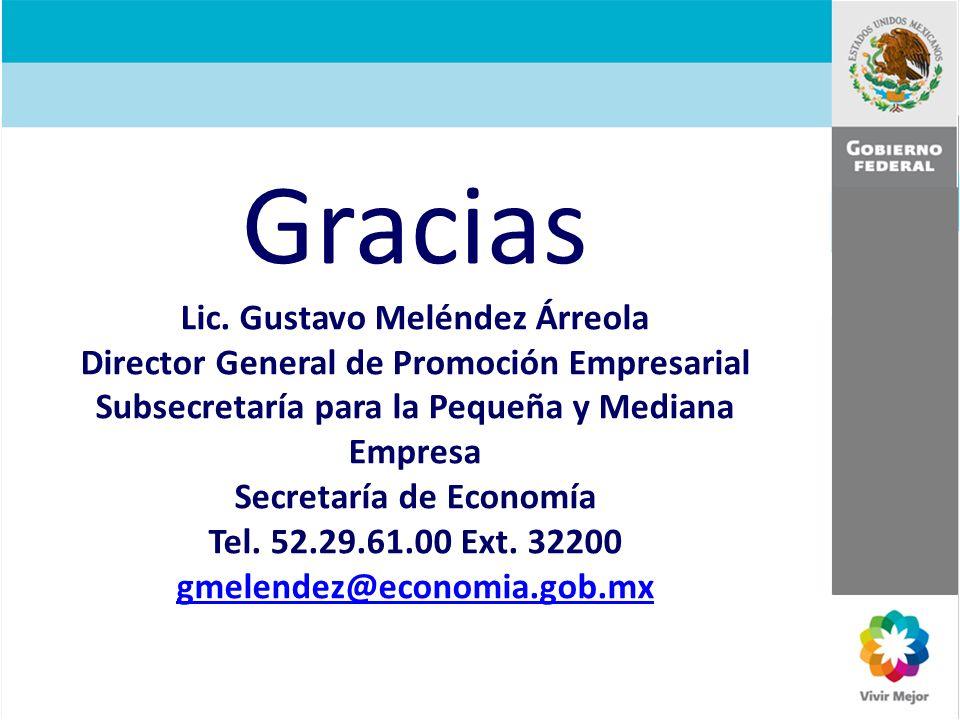 Gracias Lic. Gustavo Meléndez Árreola Director General de Promoción Empresarial Subsecretaría para la Pequeña y Mediana Empresa Secretaría de Economía