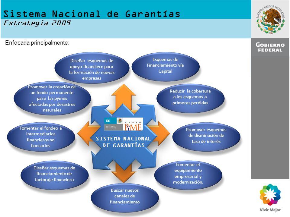 Sistema Nacional de Garantías Estrategia 2009 SISTEMA NACIONAL DE GARANTÍAS Diseñar esquemas de apoyo financiero para la formación de nuevas empresas