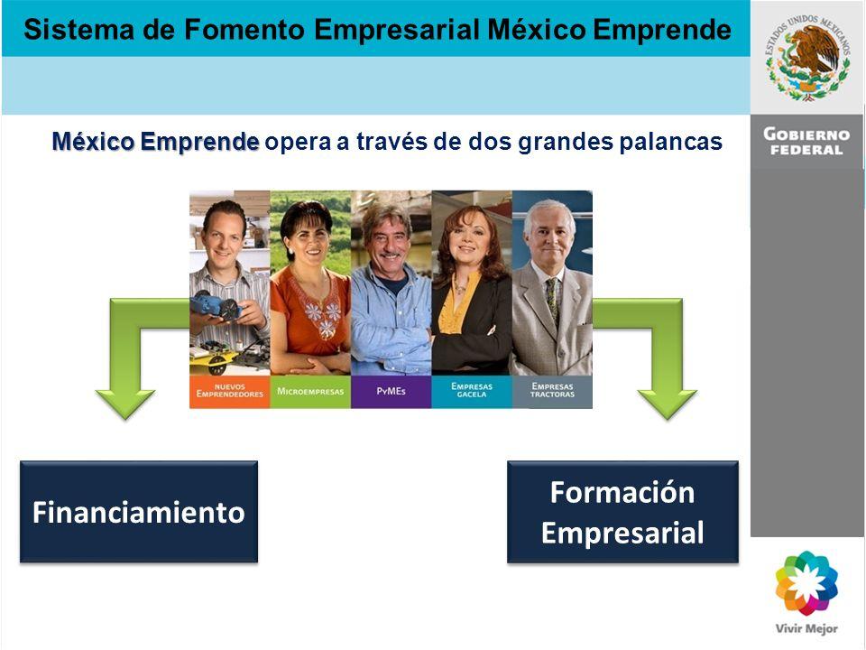 Sistema de Fomento Empresarial México Emprende Financiamiento Estrategia de Fomento 2009 - 2012 La Estrategia de Fomento Empresarial se basa en 2 pilares fundamentales: financiamiento y formación empresarial.