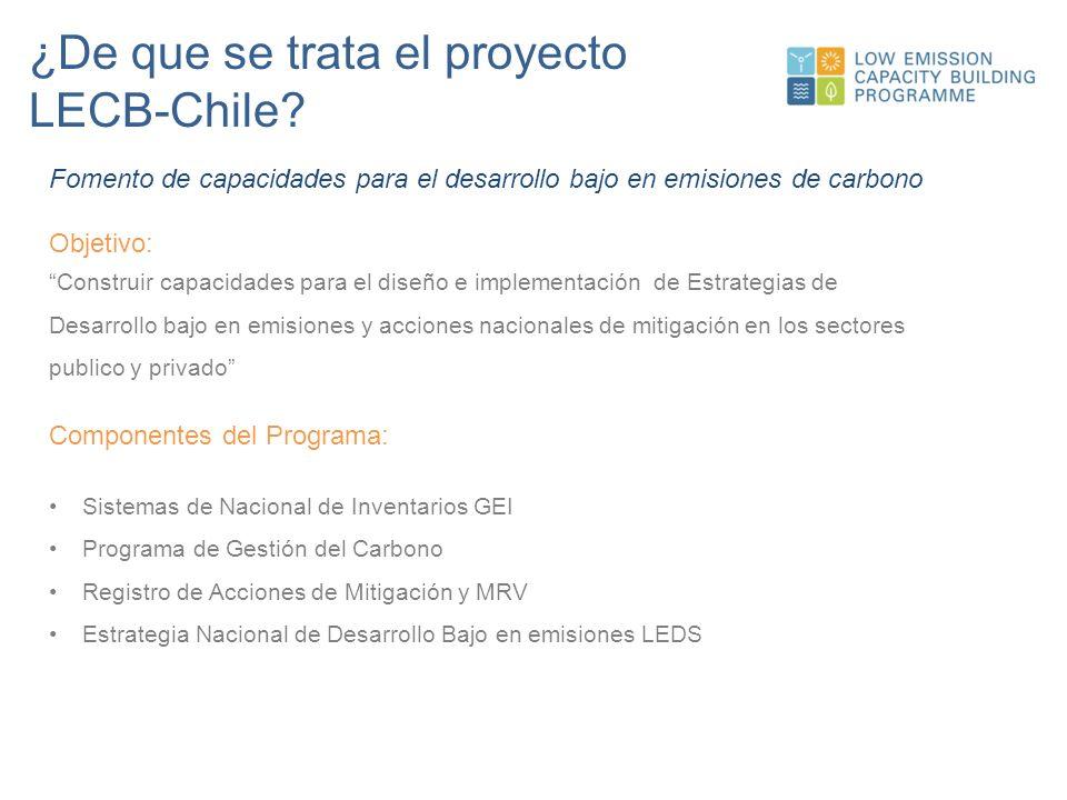 ¿De que se trata el proyecto LECB-Chile.