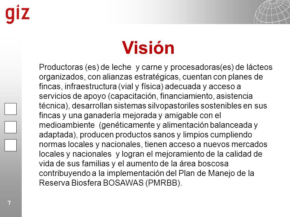8 Fortalecimiento y promoción de las organizaciones, de la asociatividad y de la cultura empresarial con equidad de genero Mejoramiento de producción, diversificación, productividad y calidad en planta Mejoramiento de la comercialización (incluyendo nichos de mercado amigable al medioambiente) Fomentar la reforestación y conservación del medio ambiente a través del uso sostenible de los recursos naturales en las fincas y plantas de procesamiento Fomento de Alianzas estratégicas, Incidencia y gestión de la cadena InsumosProducciónTransformaciónComercializaciónMercado Mejoramiento de producción diversificada, productividad y calidad en finca