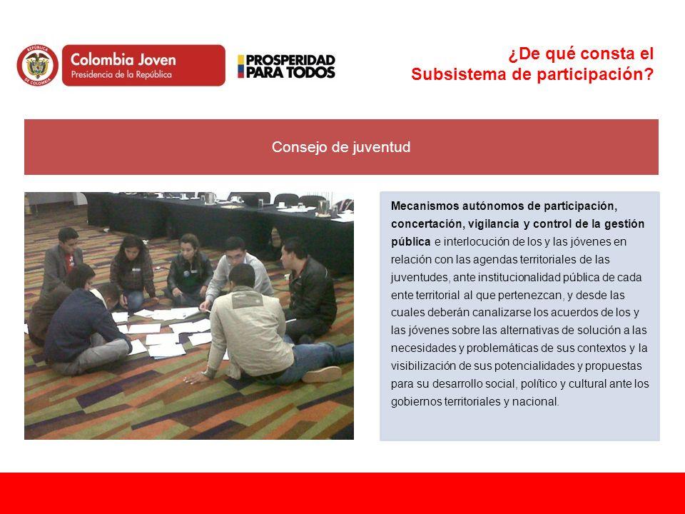 ¿De qué consta el Subsistema de participación? Consejo de juventud Mecanismos autónomos de participación, concertación, vigilancia y control de la ges