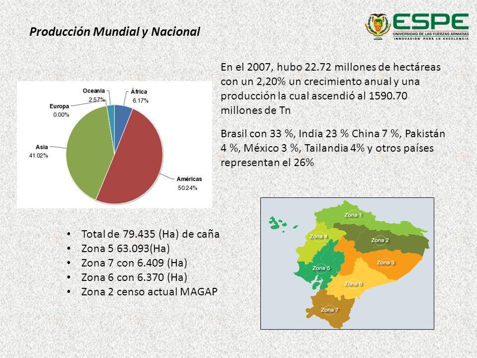 Producción Mundial y Nacional En el 2007, hubo 22.72 millones de hectáreas con un 2,20% un crecimiento anual y una producción la cual ascendió al 1590