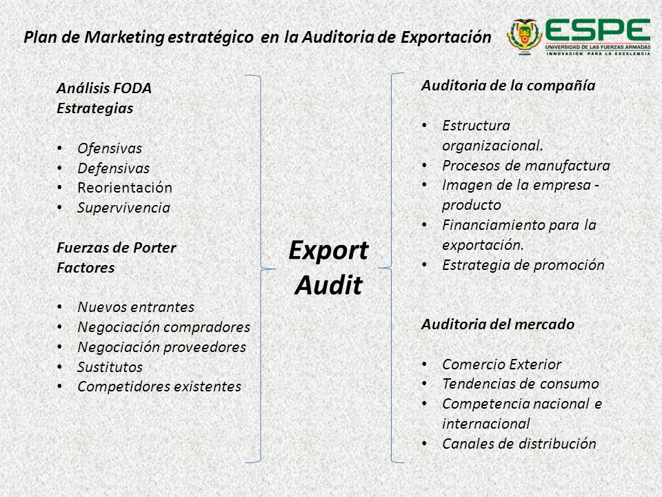 Plan de Marketing estratégico en la Auditoria de Exportación Export Audit Auditoria de la compañía Estructura organizacional.