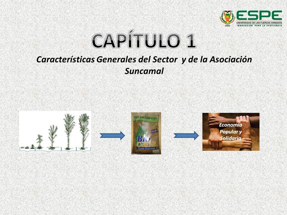 Capítulo 1 Utilización de las capacidades y los conocimientos de la población.