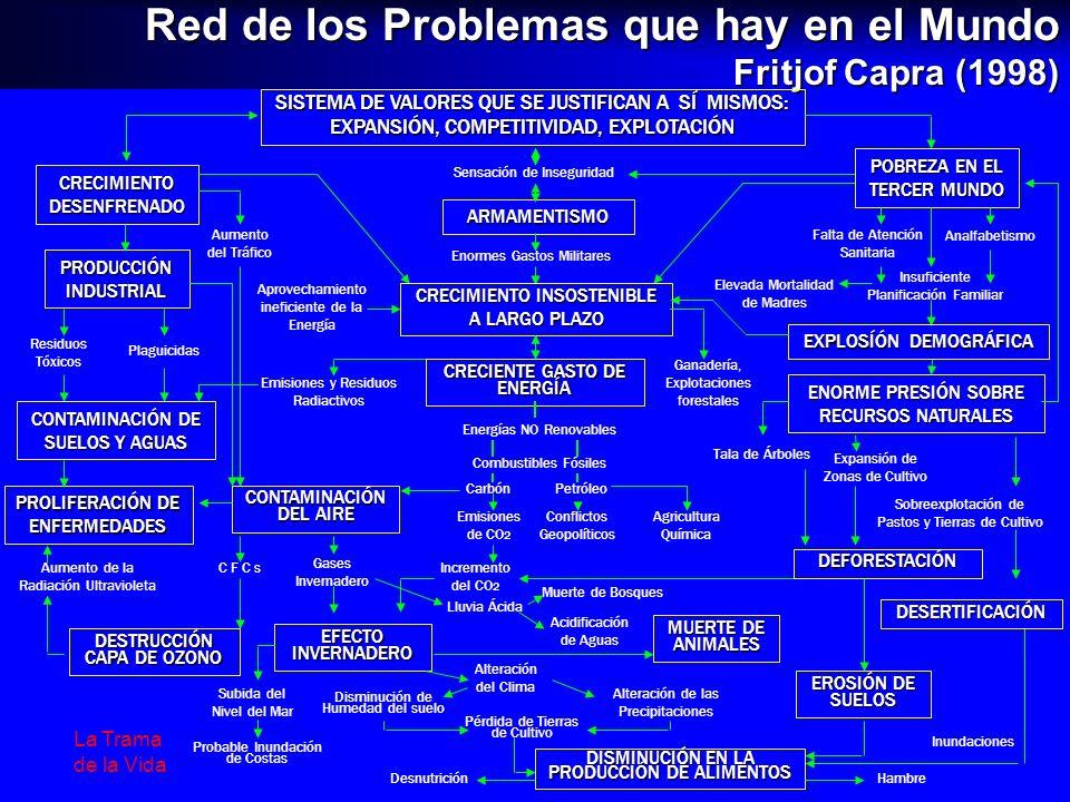 Red de los Problemas que hay en el Mundo Fritjof Capra (1998) SISTEMA DE VALORES QUE SE JUSTIFICAN A SÍ MISMOS: EXPANSIÓN, COMPETITIVIDAD, EXPLOTACIÓN