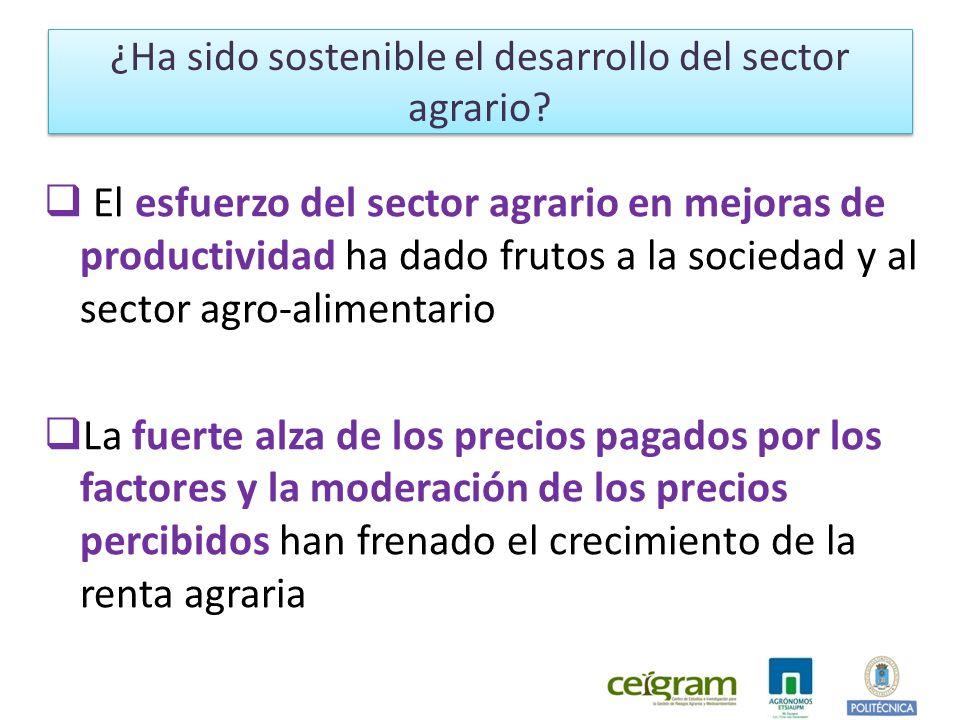 El esfuerzo del sector agrario en mejoras de productividad ha dado frutos a la sociedad y al sector agro-alimentario La fuerte alza de los precios pagados por los factores y la moderación de los precios percibidos han frenado el crecimiento de la renta agraria