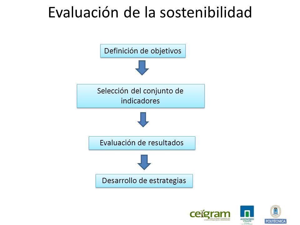 Definición de objetivos Selección del conjunto de indicadores Evaluación de resultados Desarrollo de estrategias Evaluación de la sostenibilidad