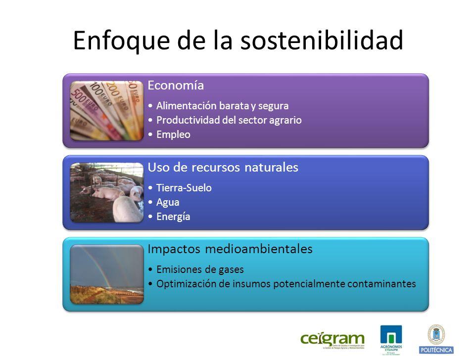 Enfoque de la sostenibilidad Economía Alimentación barata y segura Productividad del sector agrario Empleo Uso de recursos naturales Tierra-Suelo Agua Energía Impactos medioambientales Emisiones de gases Optimización de insumos potencialmente contaminantes