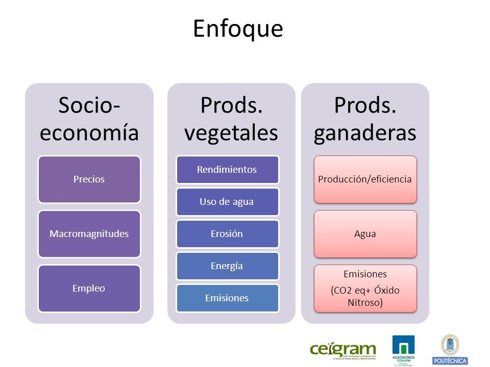 Enfoque Socio- economía PreciosMacromagnitudesEmpleo Prods.