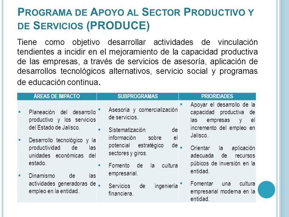 Tiene como objetivo desarrollar actividades de vinculación tendientes a incidir en el mejoramiento de la capacidad productiva de las empresas, a travé