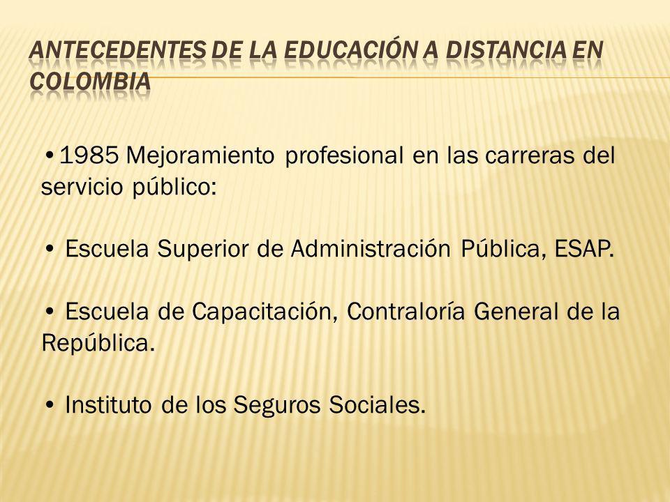 1985 Mejoramiento profesional en las carreras del servicio público: Escuela Superior de Administración Pública, ESAP. Escuela de Capacitación, Contral