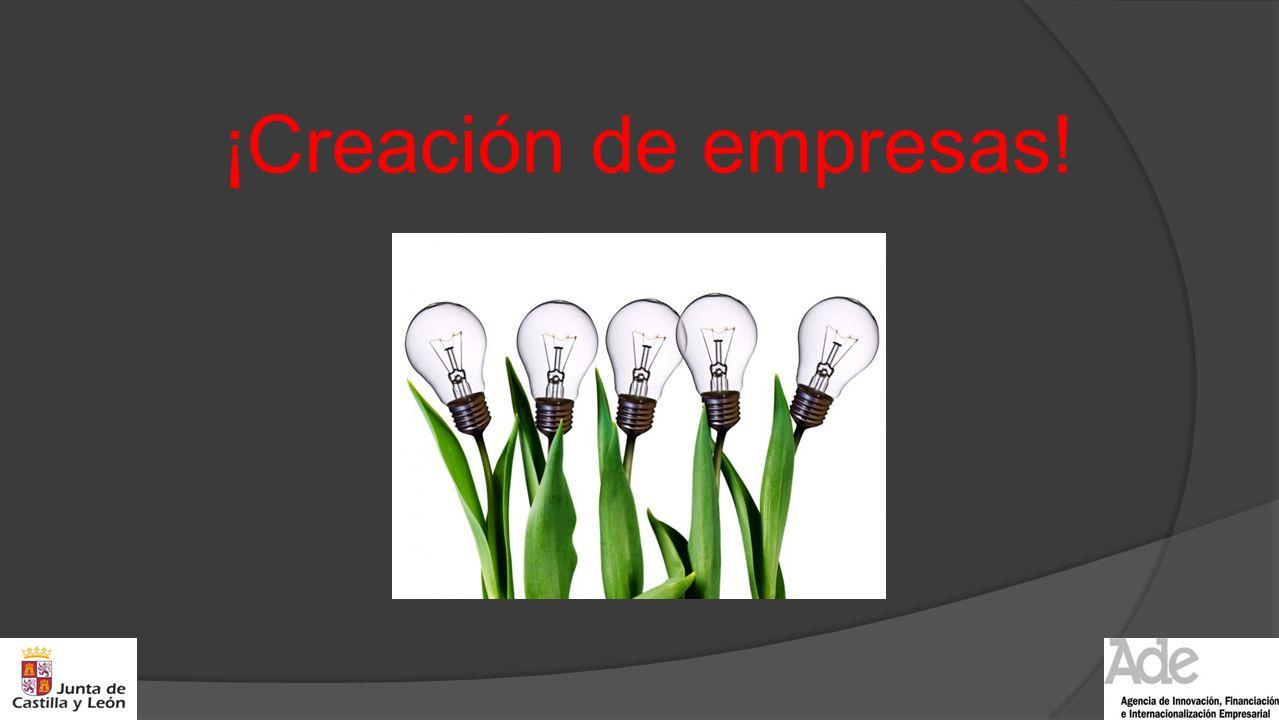¡Creación de empresas!