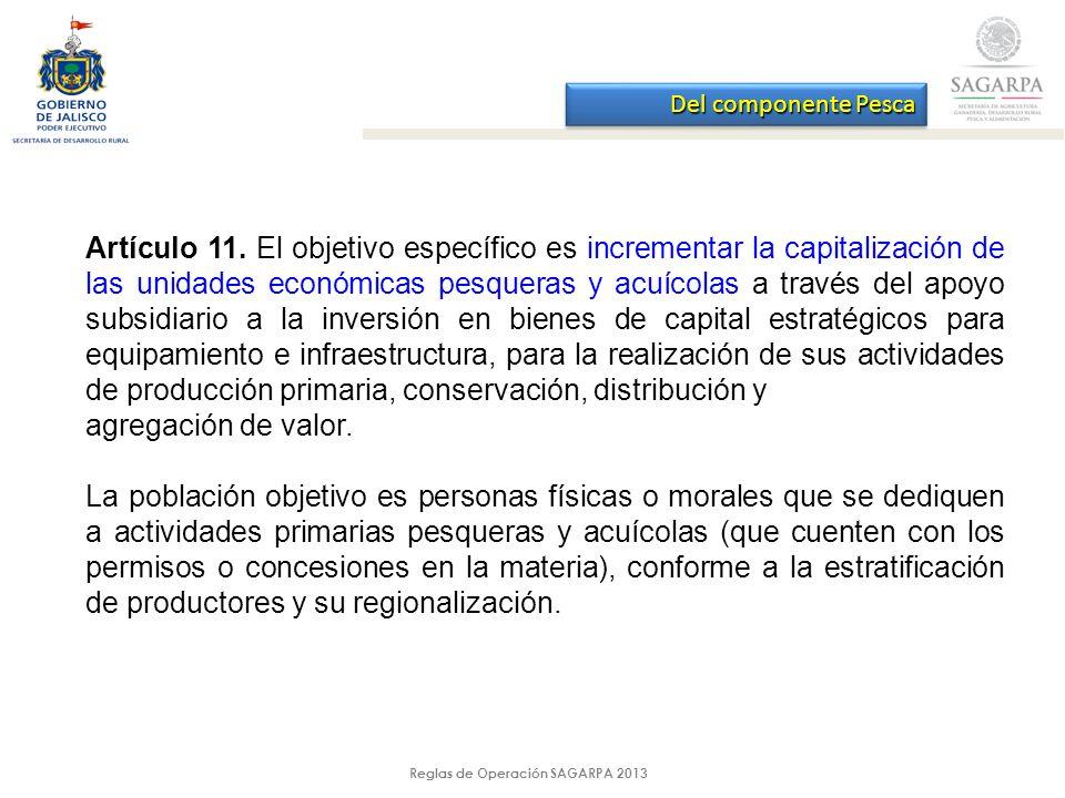 Reglas de Operación SAGARPA 2013 Del componente Pesca Artículo 11.