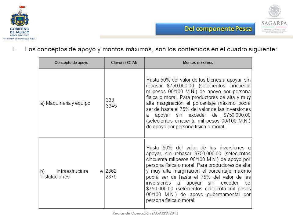 Reglas de Operación SAGARPA 2013 I.