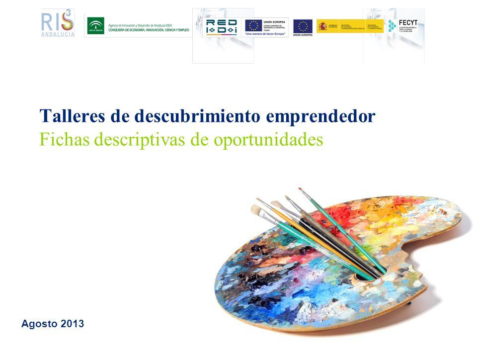 Talleres de descubrimiento emprendedor Fichas descriptivas de oportunidades Agosto 2013