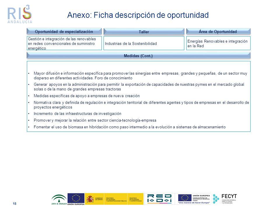 18 Dominio tecnológico Anexo: Ficha descripción de oportunidad Medidas (Cont.) Mayor difusión e información específica para promover las sinergias entre empresas, grandes y pequeñas, de un sector muy disperso en diferentes actividades.