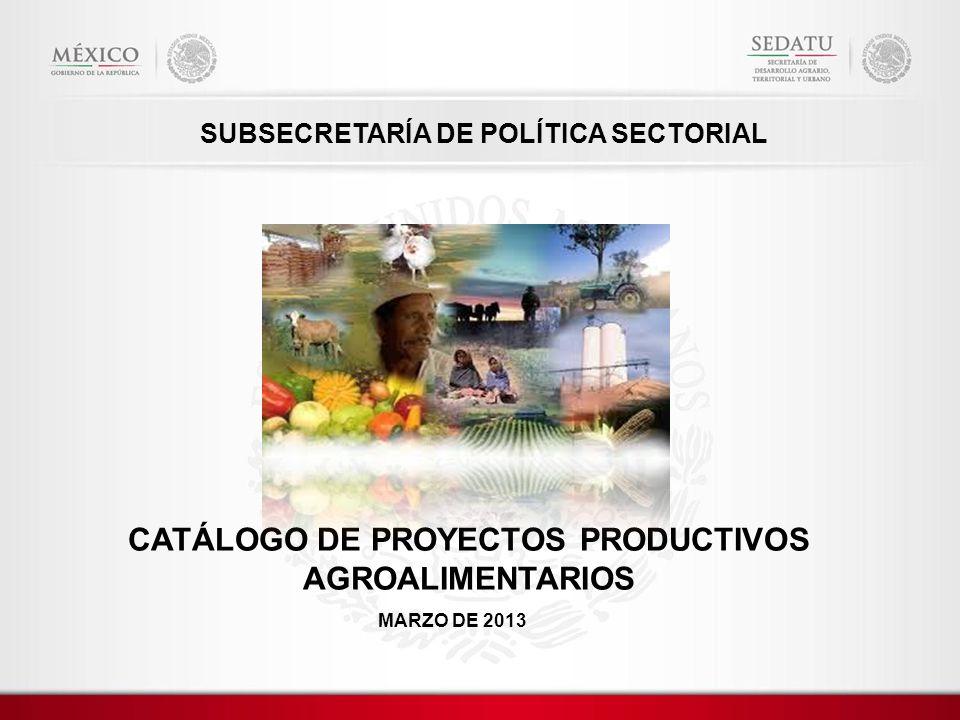 SUBSECRETARÍA DE POLÍTICA SECTORIAL CATÁLOGO DE PROYECTOS PRODUCTIVOS AGROALIMENTARIOS MARZO DE 2013