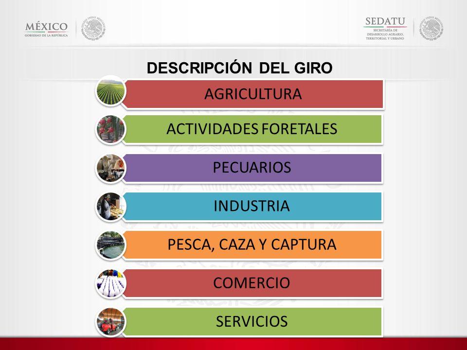 DESCRIPCIÓN DEL GIRO AGRICULTURA ACTIVIDADES FORETALES PECUARIOS INDUSTRIA PESCA, CAZA Y CAPTURA COMERCIO SERVICIOS